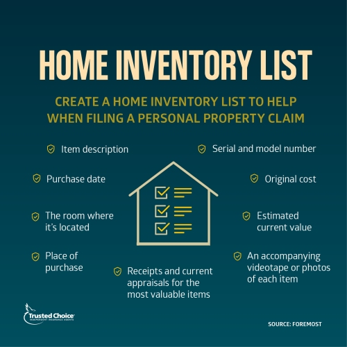 Illustrated home inventory list on green background