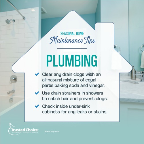 Plumbing maintenance tips on a photo of a blue bathroom