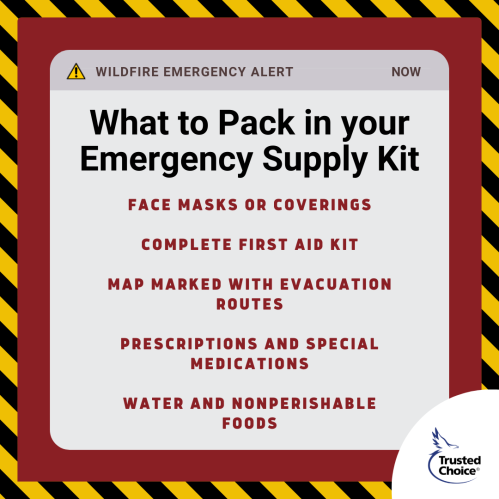 Emergency supply kit list with caution tape boarder